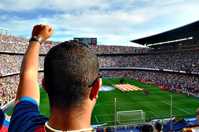 Person bakifrån tittar på fotbollsmatch